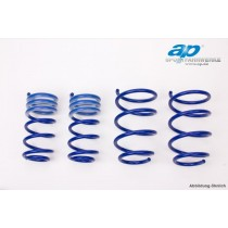 AP lowering springs Seat Leon type 1P