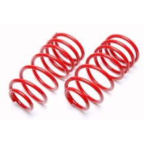 TA-Technix lowering springs Citroen Xsara type N21
