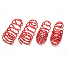 TA-Technix lowering springs Audi 80 convertible type 89